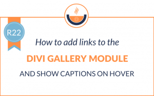 R22: How to Add Links to the Divi Gallery Module and Show Captions on Hover