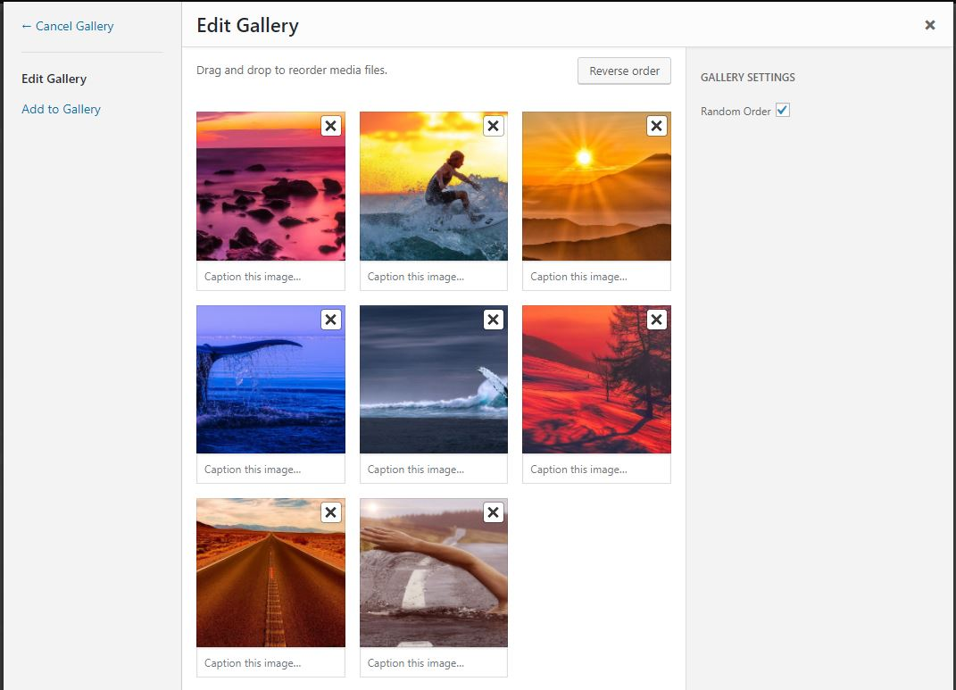 How to create a random header image using the divi gallery module