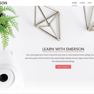 Emerson child theme for Divi & LifterLMS